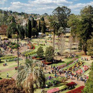 Looking over beautiful Queens Park in Toowoomba