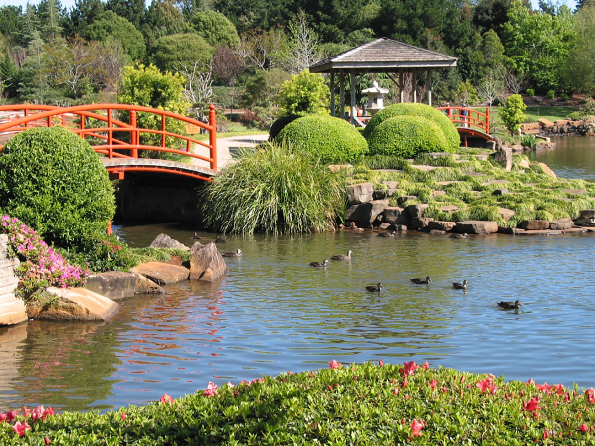 Beautiful Japanese Gardens in Toowoomba