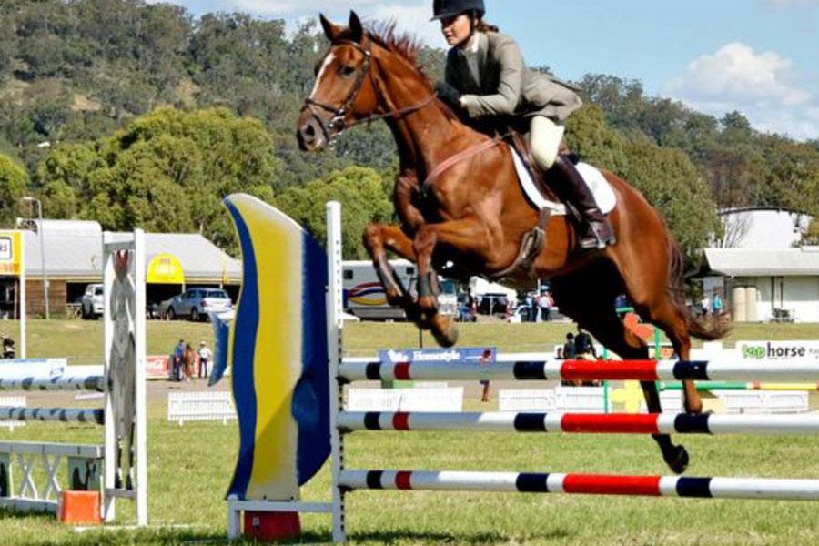 Horse jumping at Toowoomba Royal Show