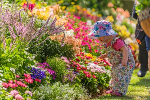 Baby with beautiful blooming flower bed