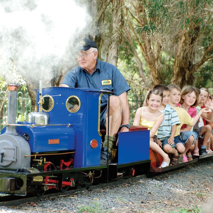 Man driving blue miniature steam train